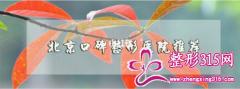 北京口碑排名好的整形医院推荐